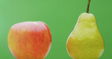 appels en peren rit